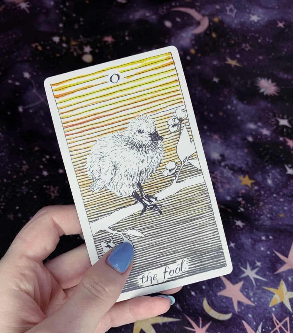 the fool tarot card the wild unknown